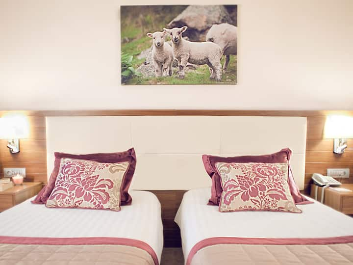 Executive Standard Room - Apart Hotel Best