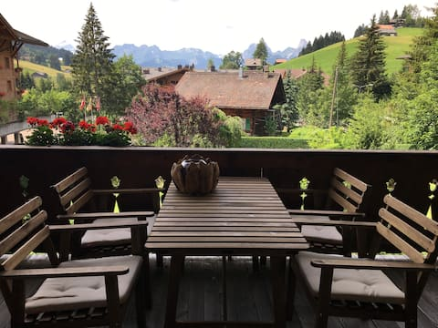 Top luxurious apartment near Gstaad