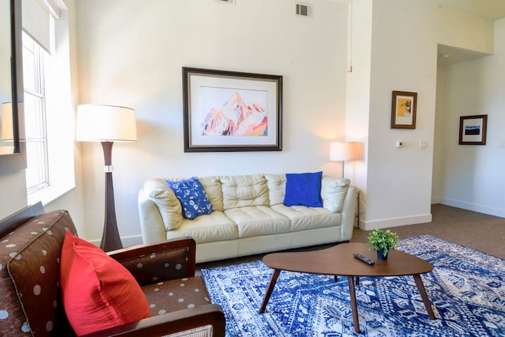 Astounding 2 bedroom Apartment in Downtown Dallas