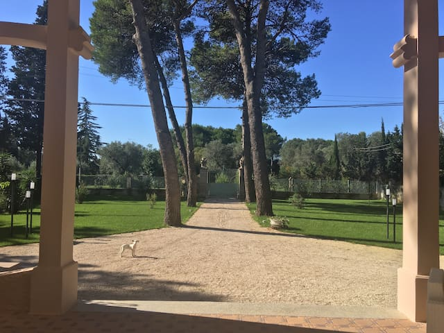 Stanza con bagno in oasi di verde - Mesagne - บ้าน