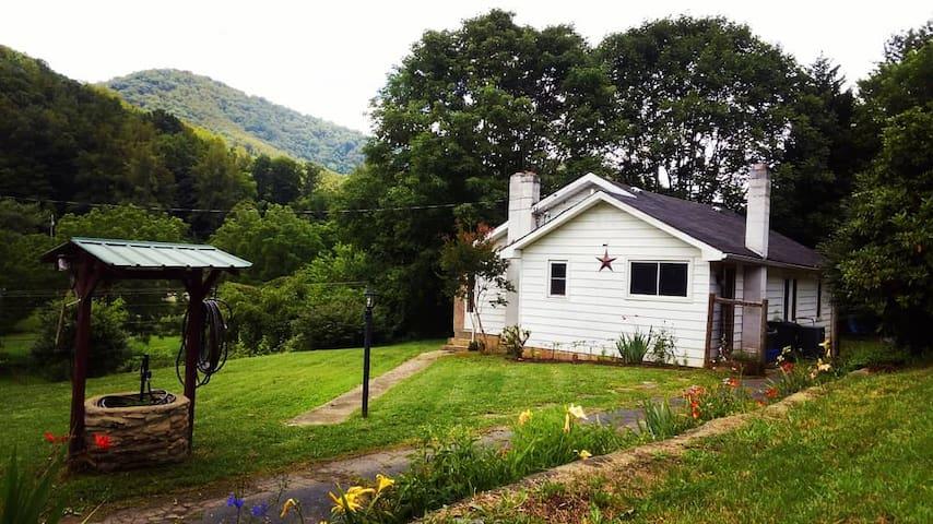 Big Ivy Little Farm