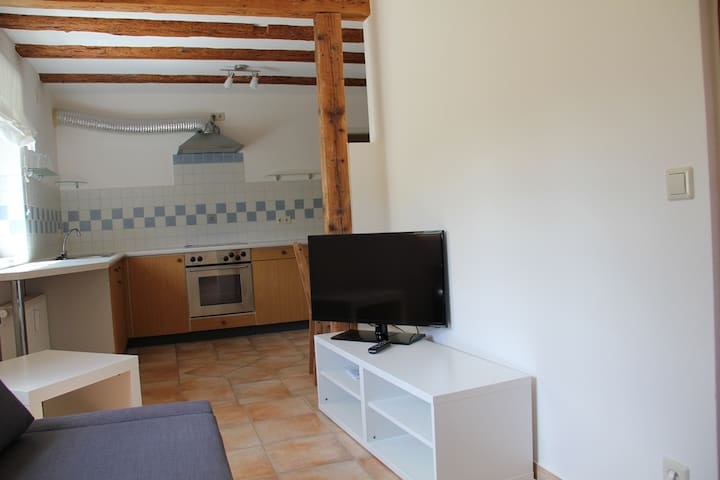 Wohnung in Gammelshausen - Gammelshausen - Appartement
