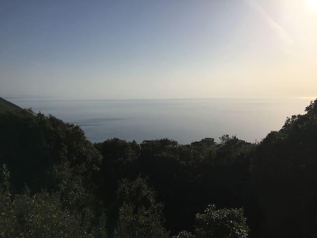 Maison Cap Corse vue mer et au calme - Morsiglia - Villa
