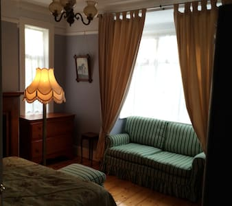 Romantic, quiet double room with working fireplace in period house, w free parking. Furnished with antique chic furniture, including sofa and large wardrobe. 2 min walk from Dart and 7 bus. 5 min from beach. 10 min from Blackrock / Monkstown villages