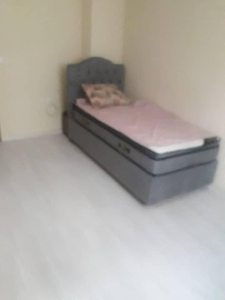 Room in 2+1
