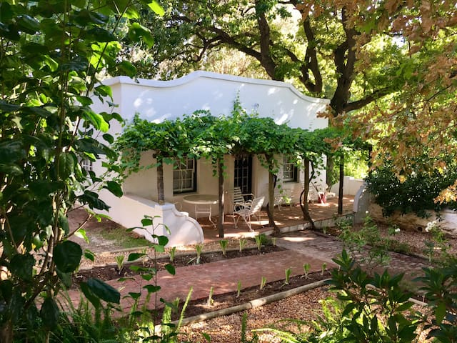 Vineyard Cottage - Franschhoek - House