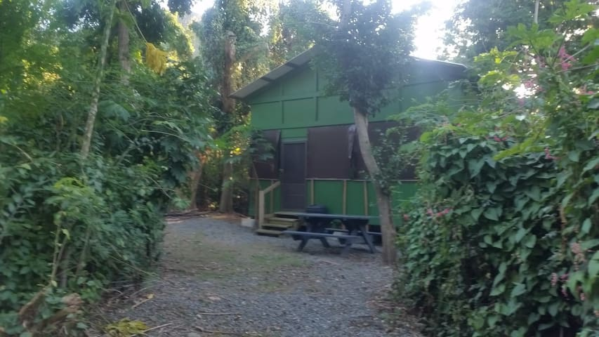 Eco Cabin with TWO bedroom just steps from beach