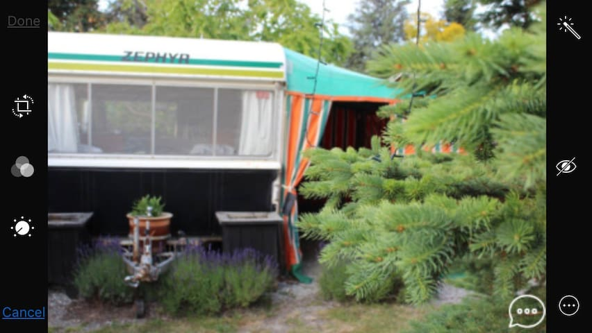 """Cheap Cheer-full Caravan"" Cromwell NZ - Cromwell"