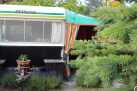 """Cheap Cheer-full Caravan"" Cromwell NZ - Cromwell - Дом на колесах"