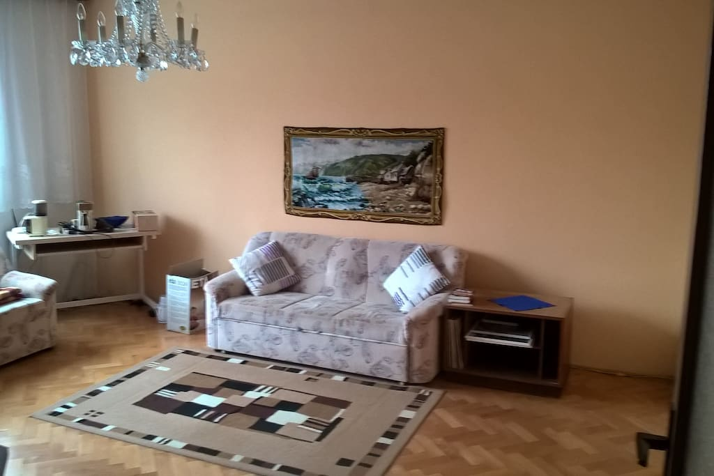 livingroom (bedroom for one)