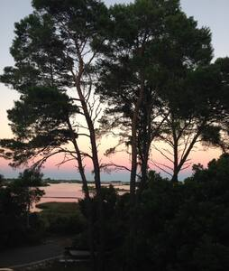 Anchor Point Cottage - Cedar Key - Huis
