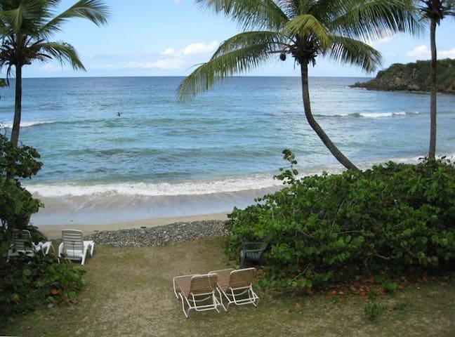 Dreamy Beachfront Escape! - Saint Thomas - Appartement en résidence
