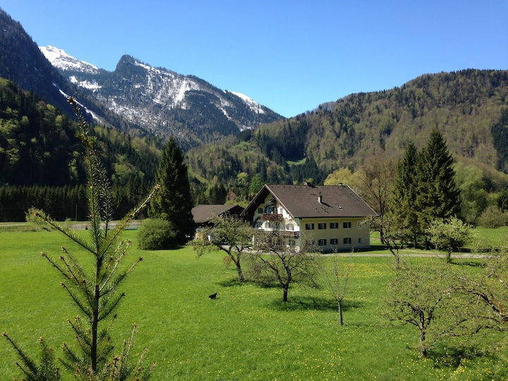 Luxurious old farmhouse with ponds near Salzburg