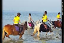 Strand rit met onze gasten
