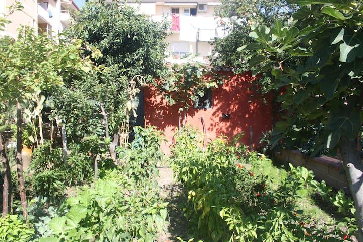 Barnet House Lamezia  Room1 - Lamezia Terme - House