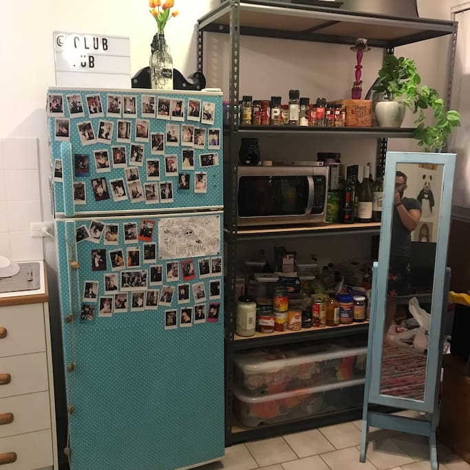 Fridge and Kitchen shelves