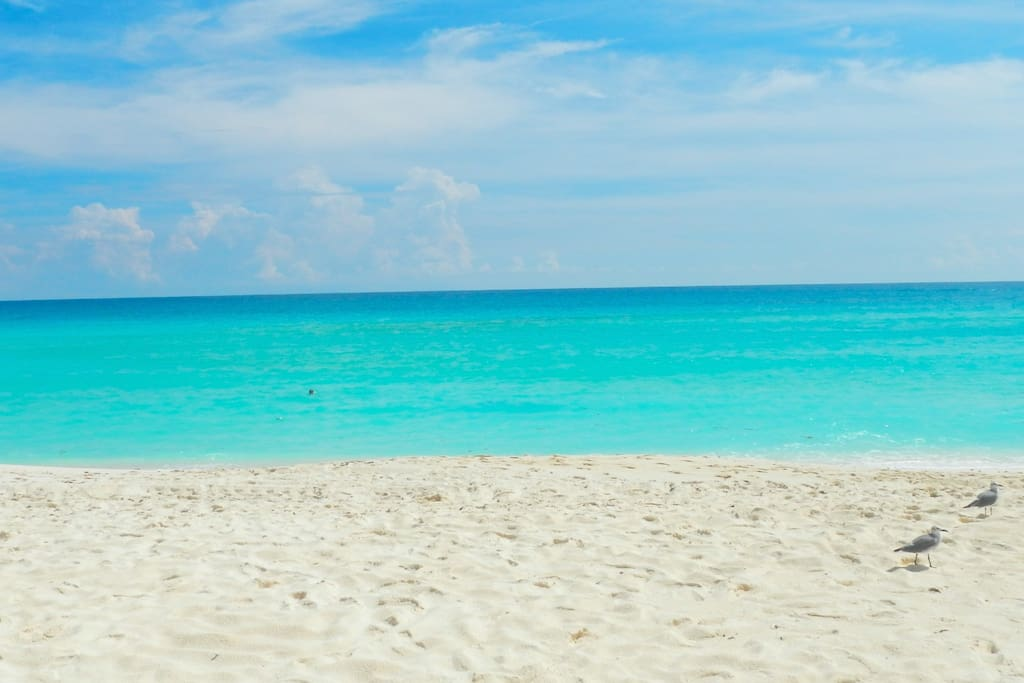 Turquoise Warm & Clear Crystal Water