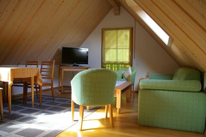 Haus Anna, (Ottenhöfen), Ferienwohnung mit 70qm, 1 Schlafzimmer für max. 4 Personen, Balkon
