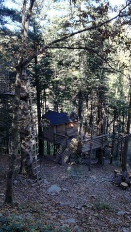 Cabane dans les bois - Épicéa - Prats-de-Mollo-la-Preste - Bed & Breakfast