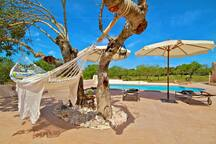 Pool mit  Hängematte  im-web.de/ Mallorcareise SL