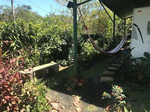 Armadillo Shelter & Garden. Valle de Anton