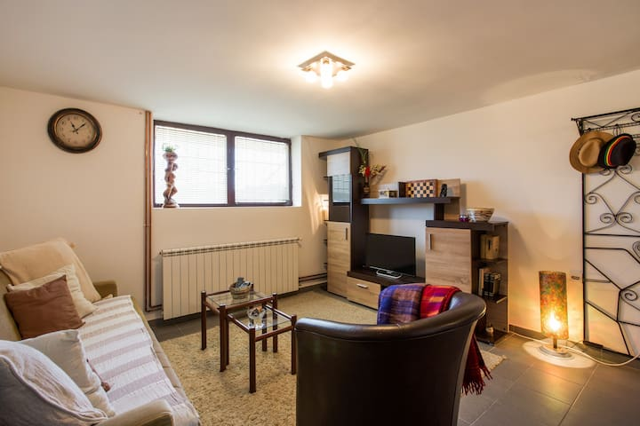 Guesthouse studio Avala View