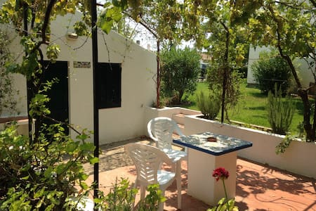 Spacious studio with private garden - Santa Luzia - Sorház