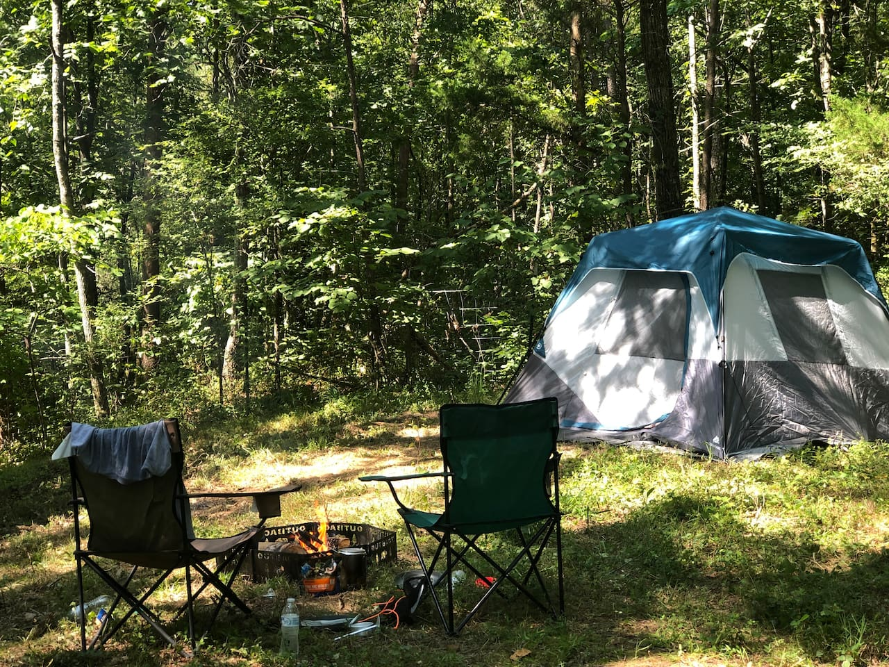 Shade & privacy in the forest at this campsite