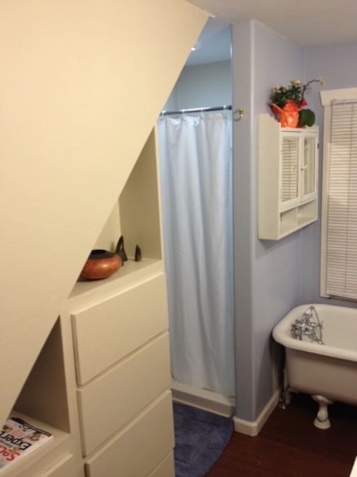 Bathroom with shower and clawfoot tub