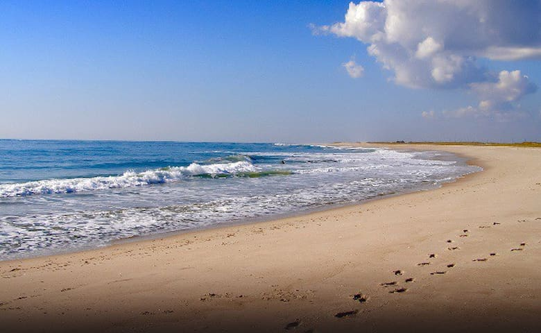 Beautiful shoreline of Ponquogue beach.