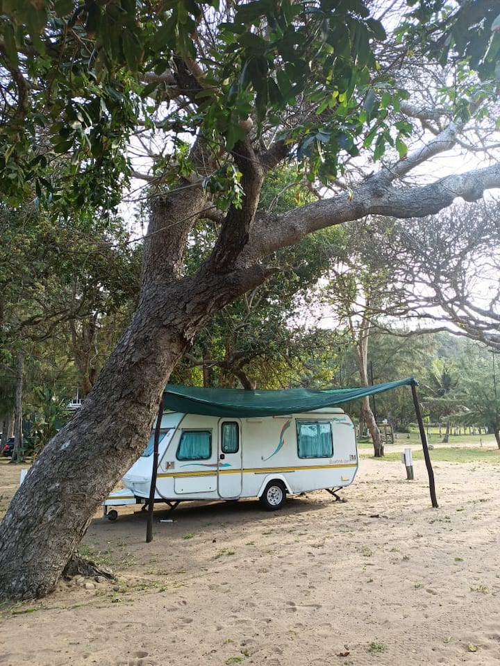 Viva uma experiência única na praia da Ponta