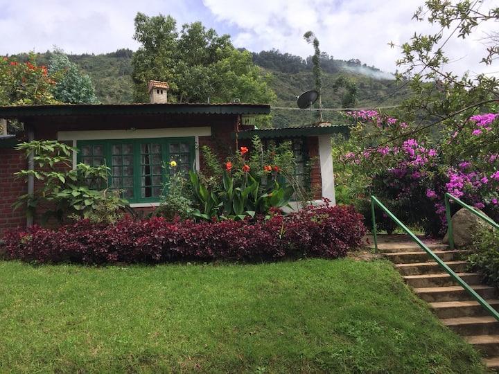 Satya Surabhi- Paradise on Earth