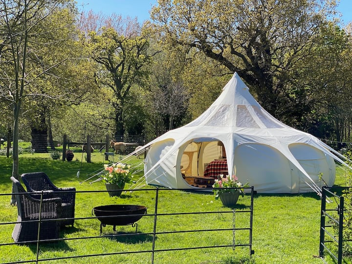 Unwind and re-wild in our Lotus Belle Tent