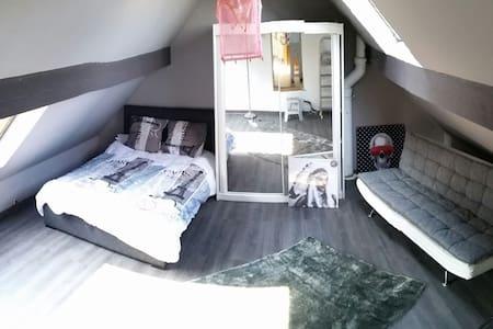 Superbe chambre Paris et Disney ! - Férolles-Attilly