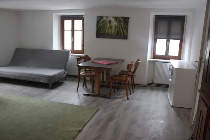 1 bedroom flat (forest/5)