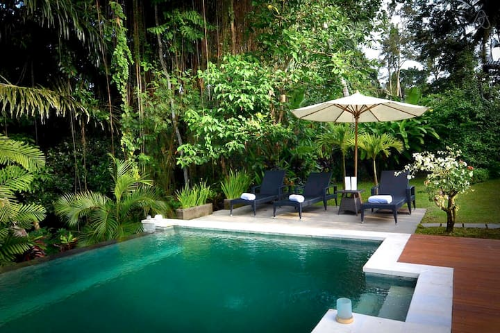 The pool shared by 5 villas