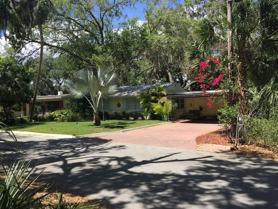 Topo Room Rockledge Cocoa Houses For Rent In Rockledge