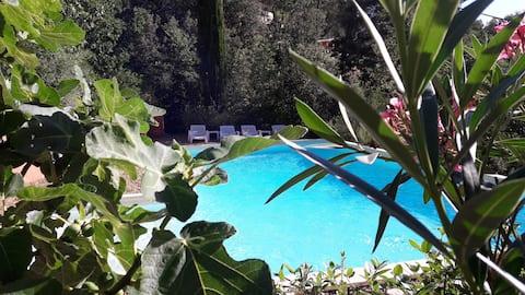 Deux pièces avec piscine à Aix-en-Provence