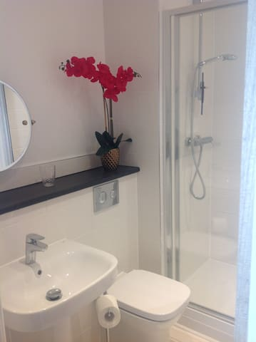 Ensuite to master bedroom with double shower.