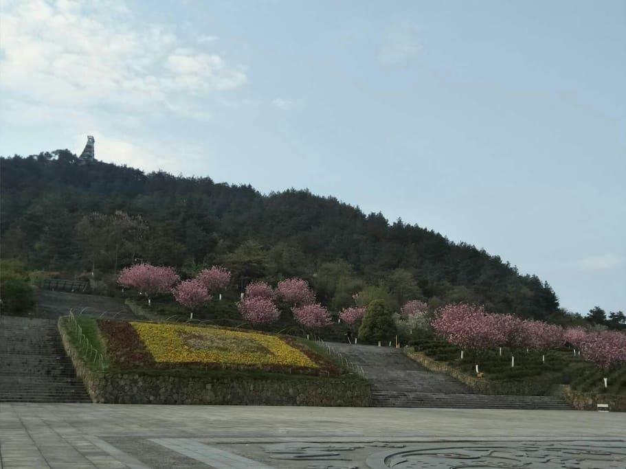 离磬园500米的凤凰山,茶饭后可以去散散步,吹吹风。
