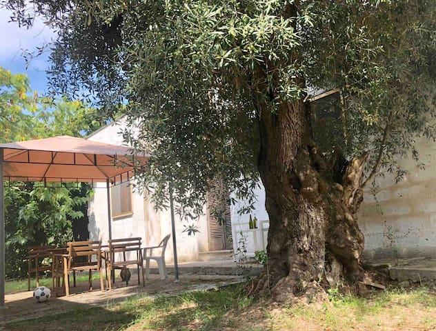 Masseria Pietro
