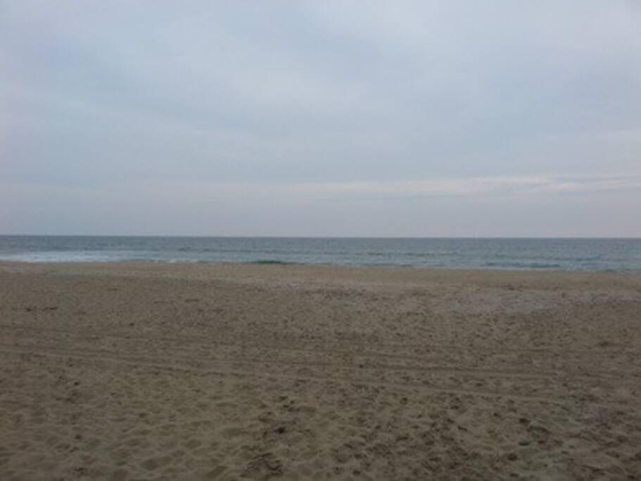 Beautiful Nags Head Beaches!