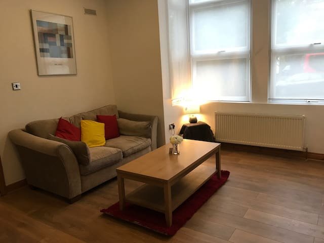 One bedroom & lounge W13 ealing - London - Apartment