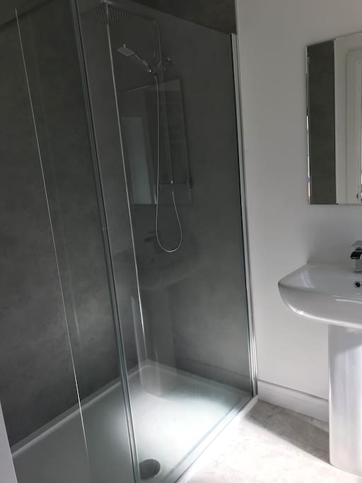 Bathroom with WC, basin and large shower.