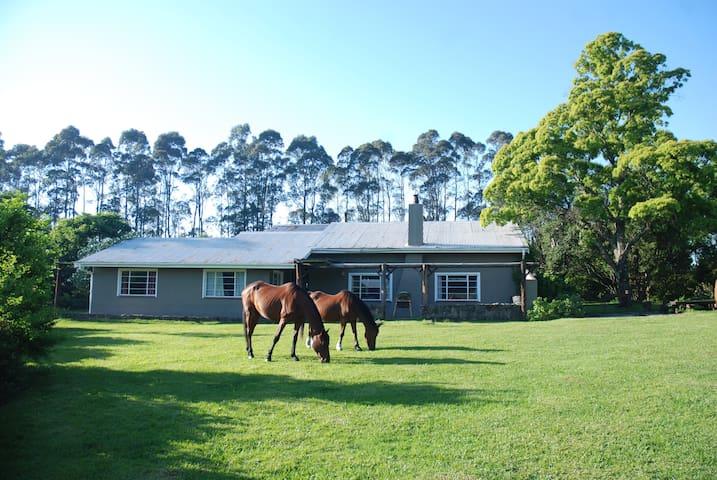 Busisa Family Adventure Retreat: Camphouse