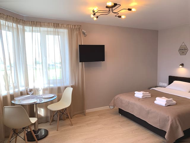 Superb Studio near airport Kiev (Zhuliany)