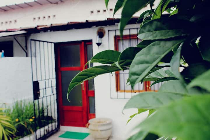 Maison Paradis