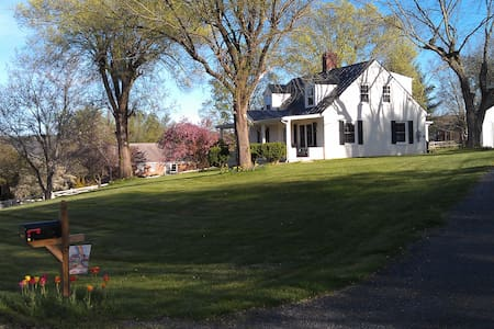 CAROL'S COTTAGE NEAR VHC,W&L,VMI! - Lexington