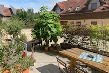 Enjoy the nature in the middle of the Hallertau