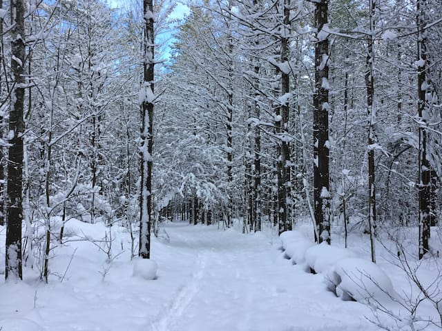 The Trail Beckons For Outdoor Adventures December 2017